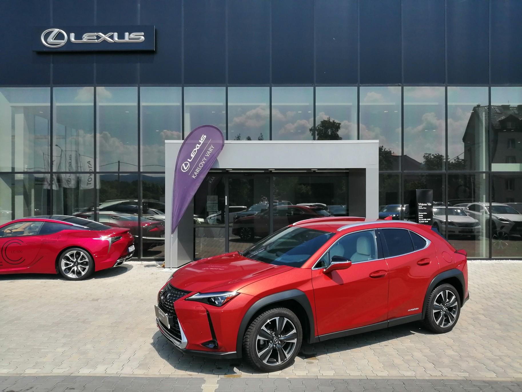 Lexus UX 250h Luxury 2.0 L Petrol Hybrid (184 k) aut. e-CVT (4X4)